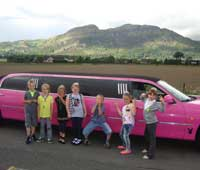 Pink Limo For 8th Birthday