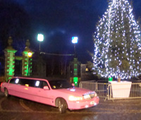 Dunfermline Christmas tree